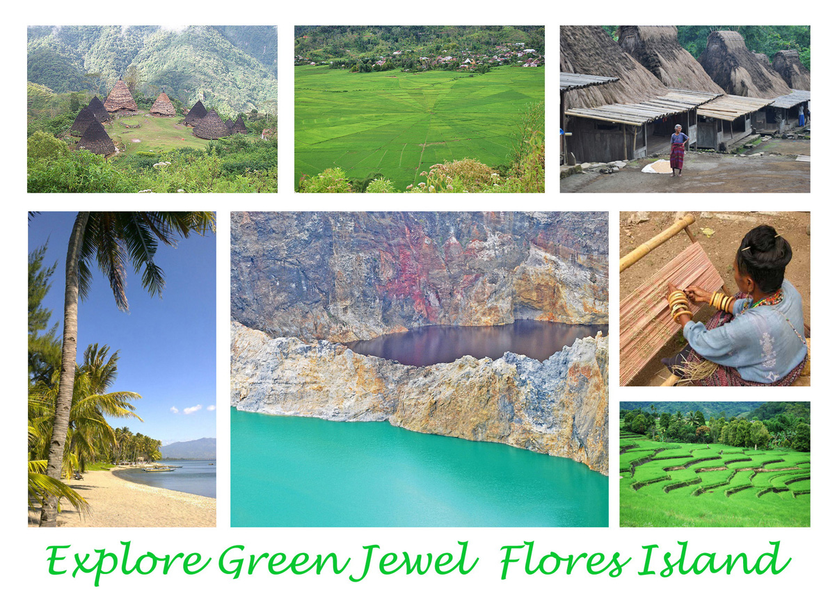 Flores Indonesia Tours and Travel from Maumere